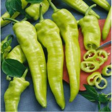 Hungarian Chilli Seeds Vegetable Seeds