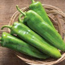 Anaheim Pepper Seeds Heirloom Vegetable Seeds