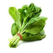 Spinach Seeds Best Quality Vegetable Seeds