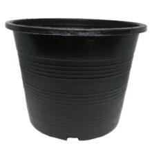 Plastic Pot black PACK OF 1