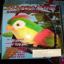 Talking parrot Talk back parrot BEST TOY FOR KIDS