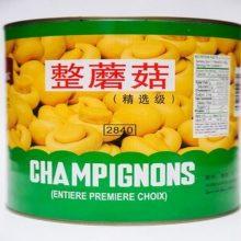 Imported Mushrooms Tin 2.84 BY HAMZA EXPRESS